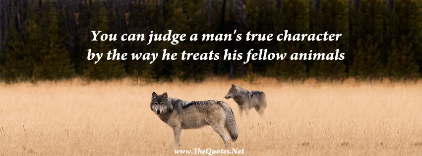Facebook Cover Image - wolves - TheQuotes.Net