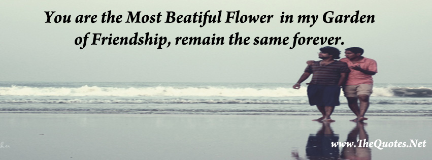 Facebook Cover Image - Friendship Quotes - TheQuotes.Net