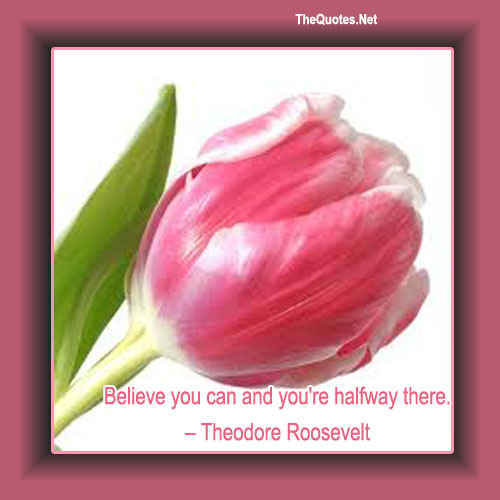 Theodore Roosevelt Believe You Can Quote