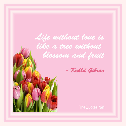 Quotes About Life Without Love: Kahlil Gibran Quotes Forgiveness. QuotesGram