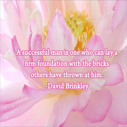A successful man is one who can lay a fi    - David Brinkley