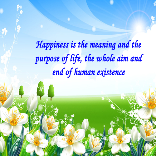 the importance of happiness in life Life, liberty and the pursuit of happiness is a well-known phrase in the united states declaration of independence the phrase gives three examples of the.